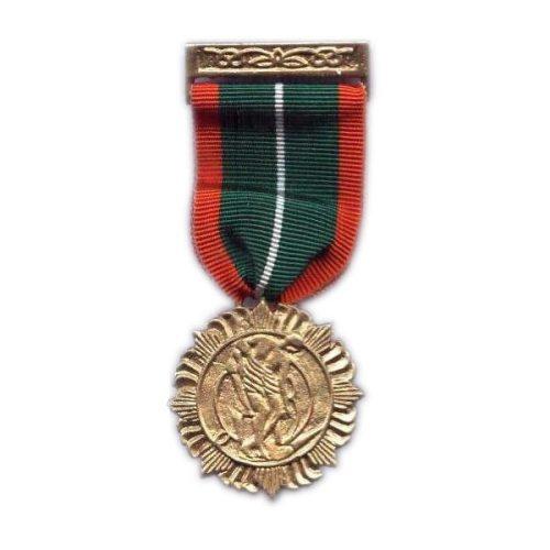 1916 Rising Survivors Medal